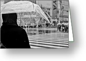 Zebra Photo Greeting Cards - Tokyo Under Snow Greeting Card by Julie Nassiet