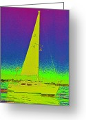 Jrr Greeting Cards - Tom Rays Sailboat Greeting Card by First Star Art