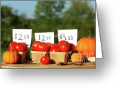 Greenhouse Greeting Cards - Tomatoes for sale Greeting Card by Sandra Cunningham