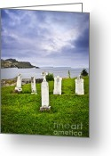 Graveyard Greeting Cards - Tombstones near Atlantic coast in Newfoundland Greeting Card by Elena Elisseeva