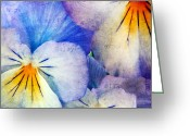 Blossom Photo Greeting Cards - Tones of Blue Greeting Card by Darren Fisher