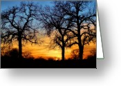 Colorful Photography Greeting Cards - Tones of Home Greeting Card by Karen M Scovill