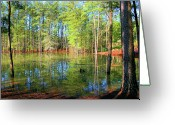Flooding Photo Greeting Cards - Too Much Rain Greeting Card by Kristin Elmquist