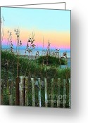 Sand Fences Photo Greeting Cards - Topsail Island Dunes and Sand Fence Greeting Card by Julie Dant