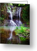 St. Lucia Photographs Greeting Cards - Torialle Waterfall Greeting Card by Bill Mortley