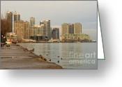 Harborfront Greeting Cards - Toronto   Greeting Card by Igor Kislev