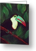 Forest Pastels Greeting Cards - Toucan Greeting Card by Anastasiya Malakhova