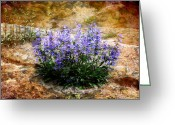Blue Flowers Digital Art Greeting Cards - Touch of Blue Greeting Card by Ellen Lacey
