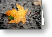 Fallen Leaf Greeting Cards - Touch of Green Greeting Card by Irina Wardas