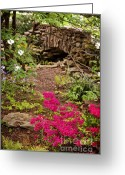 Cheekwood Greeting Cards - Touch Of Spring Greeting Card by Cheryl Davis