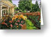Featured Artist Painting Greeting Cards - Tournament of Roses II Greeting Card by David Lloyd Glover