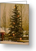 Bob Berwyn Greeting Cards - Town Tree Greeting Card by Bob Berwyn