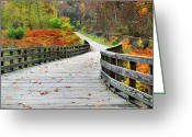 Cuyahoga Greeting Cards - Towpath in Summit County Ohio Greeting Card by Kristin Elmquist