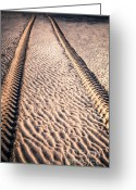 Tire Greeting Cards - Tracks in the Sand Greeting Card by Adrian Evans