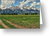 Teton National Park Greeting Cards - Tracks Leading Through Meadow Greeting Card by Jeff R Clow