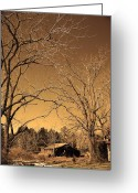 For Collectors Greeting Cards - Tractor Shed II Greeting Card by Patricia Motley