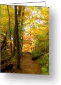 Indiana Autumn Photo Greeting Cards - Trailhead Light Greeting Card by Ed Smith