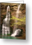 Tamyra Ayles Greeting Cards - Tranquil Falls in Vertical Greeting Card by Tamyra Ayles