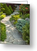 Backyard Greeting Cards - Tranquil garden  Greeting Card by Elena Elisseeva