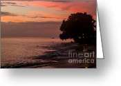 Sand Traps Greeting Cards - Tranquil Night Greeting Card by Rene Triay Photography