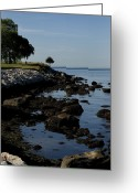 Fishers Greeting Cards - Tranquil Shoreline Of Long Island Sound Greeting Card by Todd Gipstein