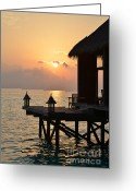 Beach Pictures Greeting Cards - Tranquility Greeting Card by Corinne Rhode
