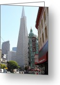 Big Cities Greeting Cards - Transamerica Pyramid Through North Beach San Francisco . 7434 Greeting Card by Wingsdomain Art and Photography