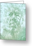 Psyche Photo Greeting Cards - Transient Greeting Card by Richard Piper
