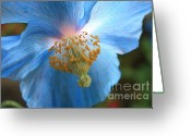 Unique Flowers Greeting Cards - Translucent Blue Poppy Greeting Card by Carol Groenen