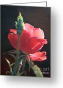 Realistic Pastels Greeting Cards - Translucent Rose Greeting Card by Nanybel Salazar