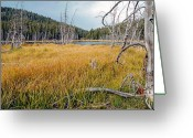 Fineart Canvas          Greeting Cards - Trap Lake Co Greeting Card by James Steele