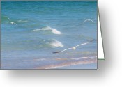 Tern Greeting Cards - Traveling Swiftly Across the Water Greeting Card by E Luiza Picciano