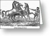 1833 Greeting Cards - Treading Corn, 1833 Greeting Card by Granger
