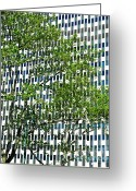 Green And White Greeting Cards - Tree and Building on Lafayette Street Greeting Card by Sarah Loft