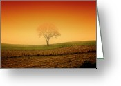 Rio Grande Greeting Cards - Tree At Sunset And Misty Greeting Card by Antonello