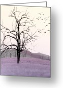 Birds Greeting Cards - Tree Change Greeting Card by Holly Kempe