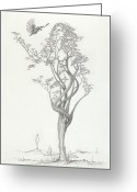 Expressive Drawings Greeting Cards - Tree Dancer in Flight Greeting Card by Mark Johnson