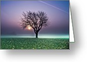 Vapor Greeting Cards - Tree In Field Greeting Card by Ulrich Mueller