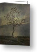 Lonesome Greeting Cards - Tree Greeting Card by Joana Kruse