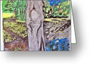 Pads Drawings Greeting Cards - Tree Near the Pond Greeting Card by Don Schaeffer