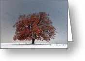 Birds Greeting Cards - Tree of Life Greeting Card by Evgeni Dinev
