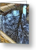 Posters And Greeting Cards - Tree Reflection From No Where Photography Image Greeting Card by James Bo Insogna