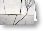 Horizontal Lines Greeting Cards - Tree Shadow on Wall Greeting Card by Paul Edmondson