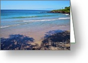Island Photos Greeting Cards - Tree Shadows at Hapuna Beach Greeting Card by Bette Phelan