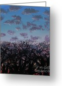 Plants Greeting Cards Greeting Cards - Tree Sunset Greeting Card by Jamie Hartley