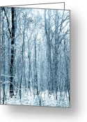 Winter Trees Mixed Media Greeting Cards - Tree Trunks Pattern Greeting Card by Svetlana Sewell
