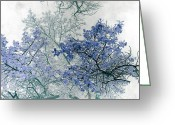 Blue Leaves Greeting Cards - Trees Above Greeting Card by Rebecca Margraf