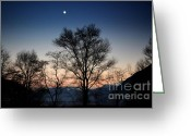After Sunset Greeting Cards - Trees and the moon Greeting Card by Mats Silvan