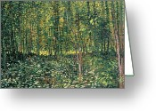 Post-impressionist Greeting Cards - Trees and Undergrowth Greeting Card by Vincent Van Gogh
