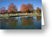 Wood Fences Greeting Cards - Trees In Fall Foliage  Reflected Greeting Card by Medford Taylor